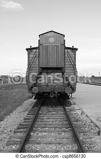 Deportation wagon at Auschwitz Birkenau - csp8656130
