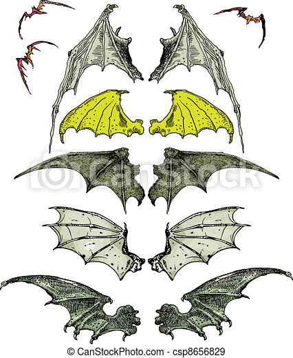 bat wings - csp8656829