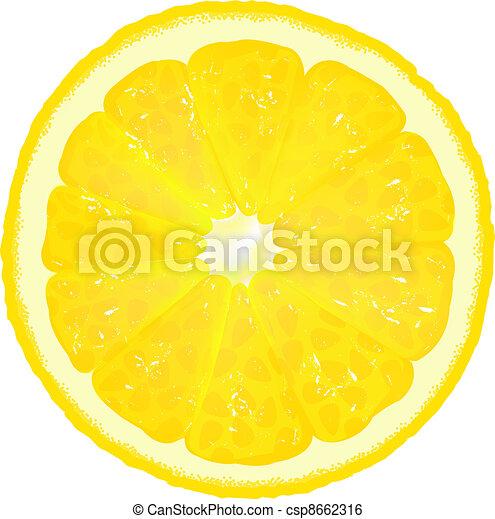 Lemon Segment With Juice - csp8662316