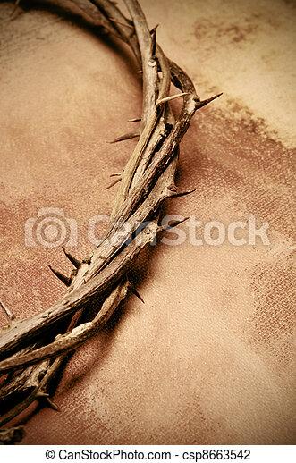 Jesus Christ crown of thorns - csp8663542