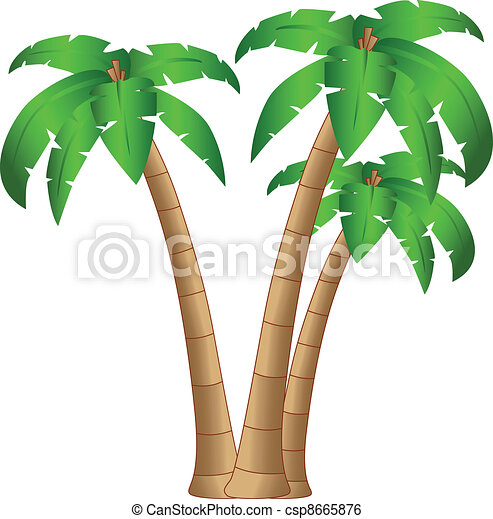 the vector tropical tree isolated on white background - csp8665876