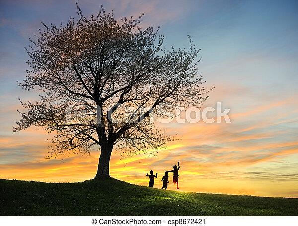 freiheit, silhouetten, Kinder, spielende, Sonnenuntergang, glück - csp8672421