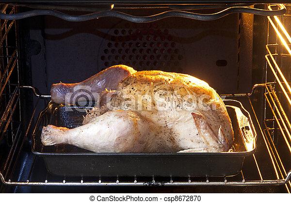 Chicken in oven - csp8672870