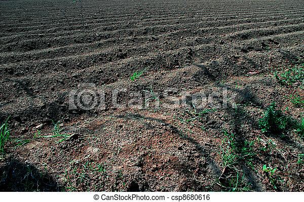 Agriculture - csp8680616