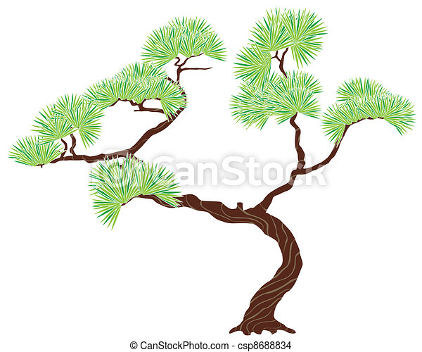 green tree pine - csp8688834