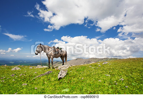 harnessed horse against mountains - csp8690910