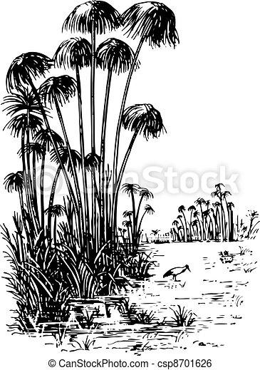 River and jungle - csp8701626