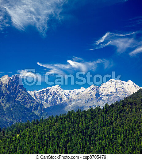 Himalayas and forest. India - csp8705479