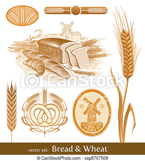 Vector set - bread and wheat - csp8707509