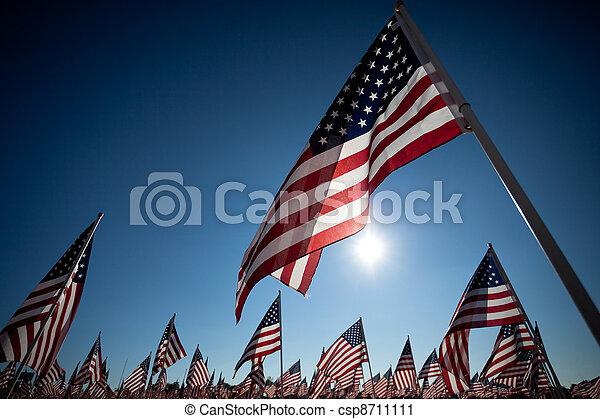 Amereican Flag display commemorating national holiday - csp8711111