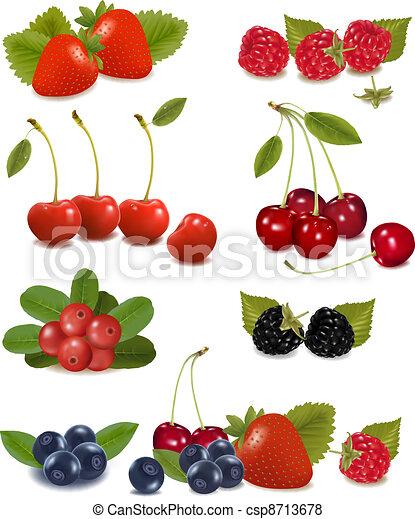 Big group of fresh berries  Vector  - csp8713678