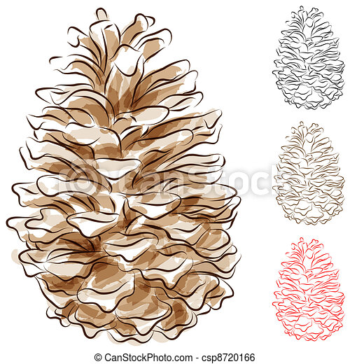 Watercolor Pine Cone - csp8720166