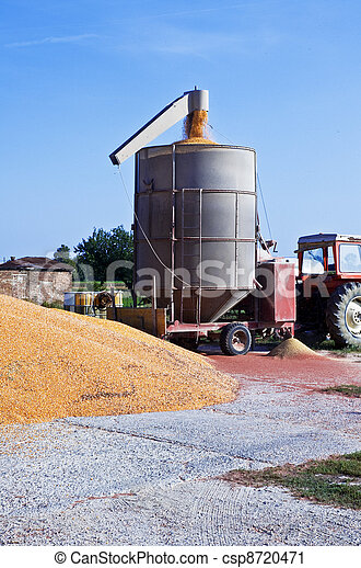 Loading of grain of corn - csp8720471