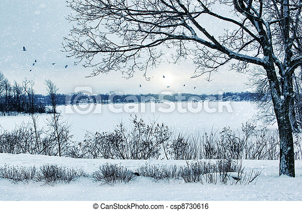 Winter landscape overlooking a lake - csp8730616