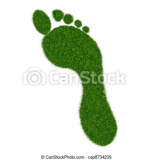 Grass Footprint - csp8734235