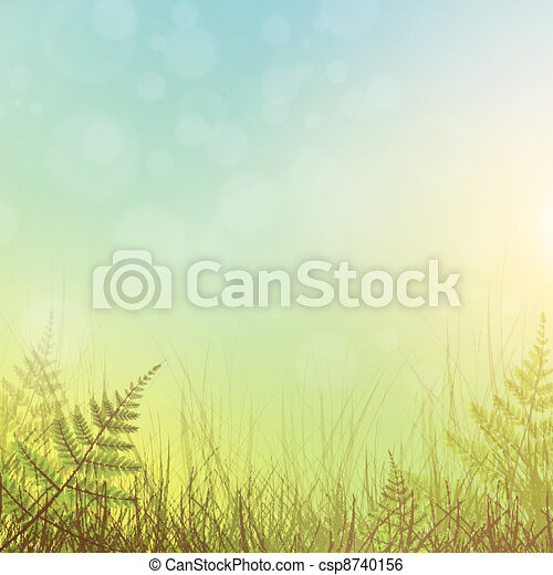 green grass - csp8740156