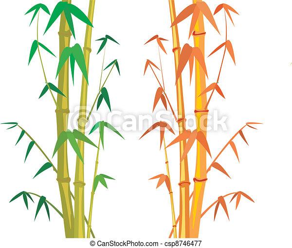 Bamboo Tree Bamboo Wood