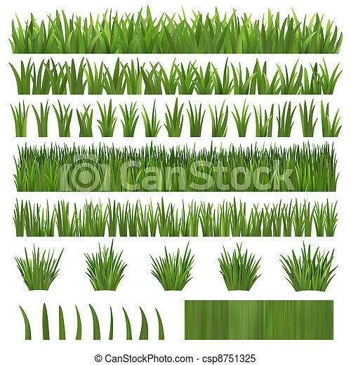 Stock im genes de encima pasto o c sped blanco varios for Tipos de cesped natural para jardin