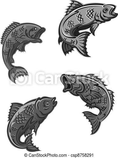 Perch, carp and bass fish - csp8758291