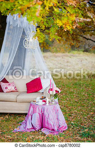 Romantic tea party in the woods - csp8780002