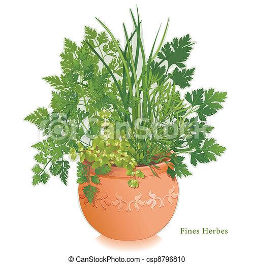 Fine Herbs Garden, Clay Flowerpot - csp8796810