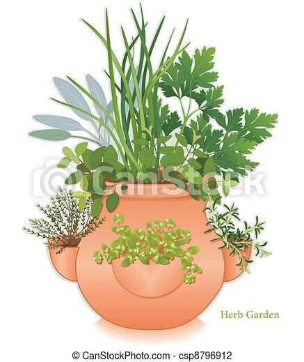 Herb Garden, Strawberry Jar Planter - csp8796912