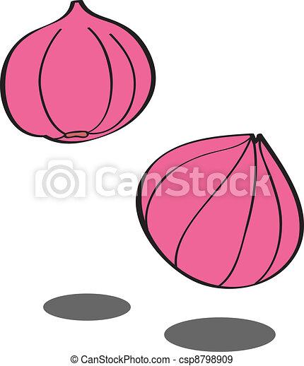 Ripe onion in vector - csp8798909