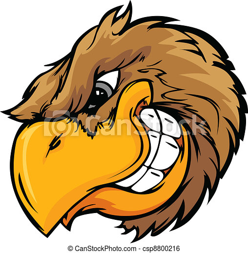 Bird Head Vector Cartoon Illustrati - csp8800216