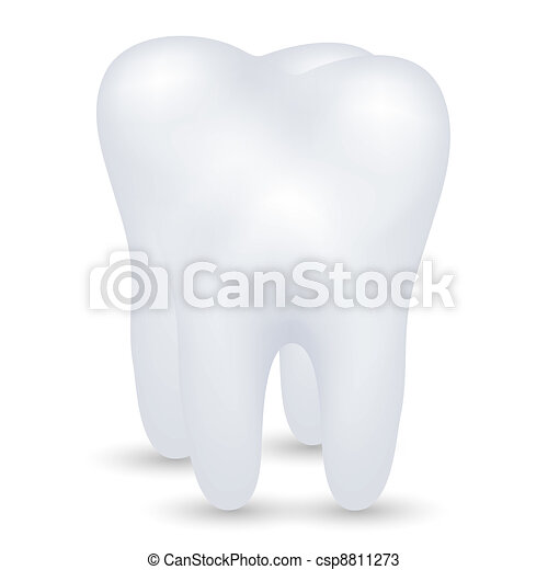 vector tooth - csp8811273