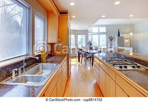 Large luxury modern wood kitchen with granite counter tops. - csp8814152
