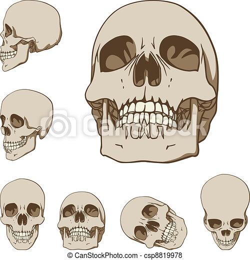Six skulls set - csp8819978