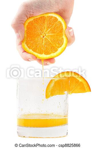 Fresh squeezed orange juice - csp8825866