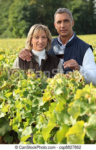 couple in the vines, man holding a red wine glass - csp8827862