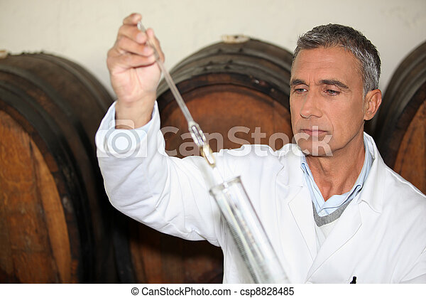 expert making tests in a wine cellar - csp8828485