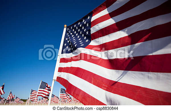 Amereican Flag display commemorating national holiday - csp8830844
