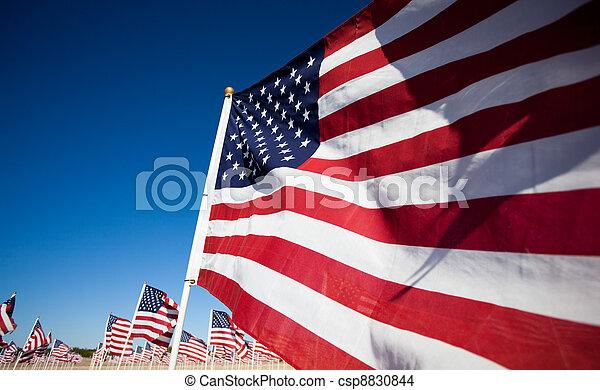 Amereican Flag display commemorating national holiday - csp8830844