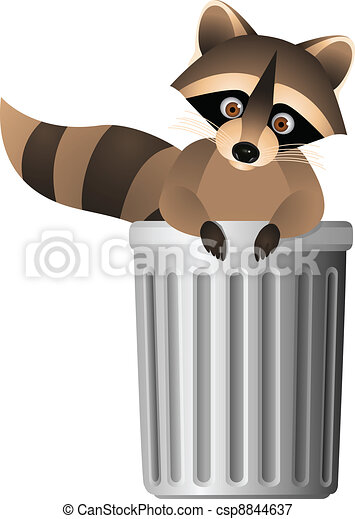 Raccoon inside garbage can  - csp8844637