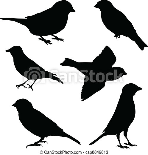 Set of vector images sparrow - csp8849813