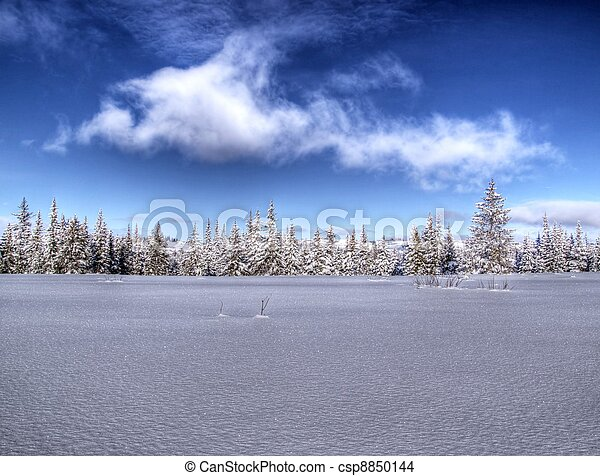 Expanse of snow on a sunny day - csp8850144