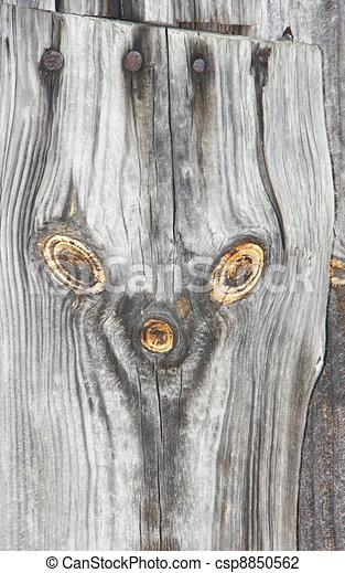 supernatural bizarre alien face of knots on textured wood plank - csp8850562
