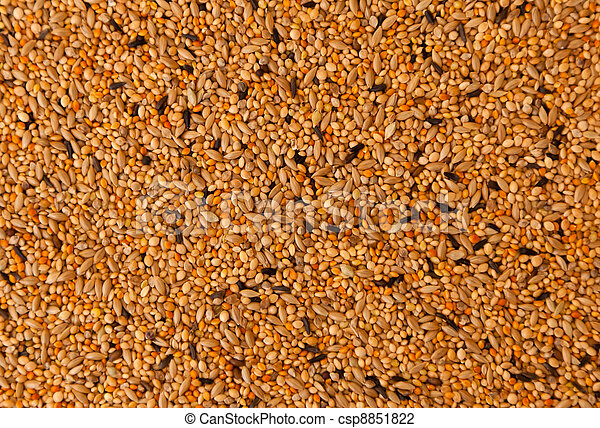 bird seed, mixed granular food for canaries and  budgerigar - csp8851822