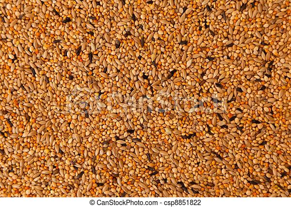 bird seed, mixed granular food for canaries and  budgerigar  - csp8851822