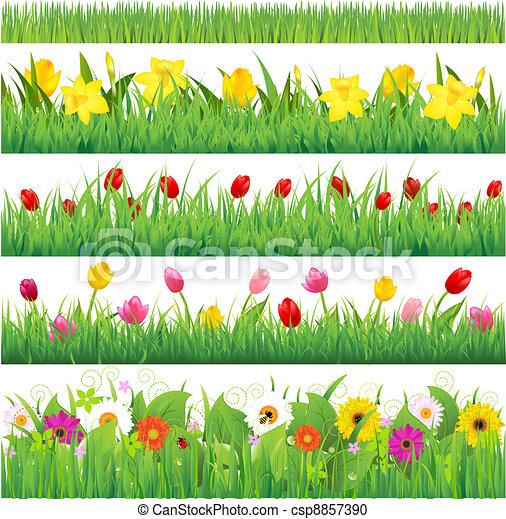 Flower Borders Set - csp8857390