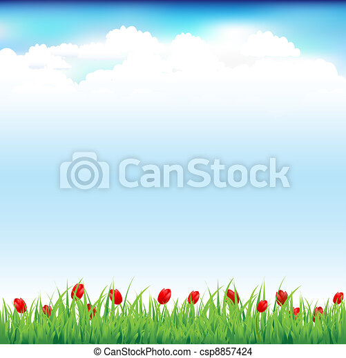 Green Landscape With Grass And Red Tulip - csp8857424