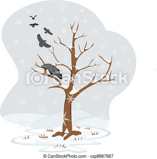 winter tree - four seasons - csp8867667