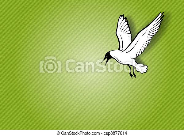 seagull - csp8877614