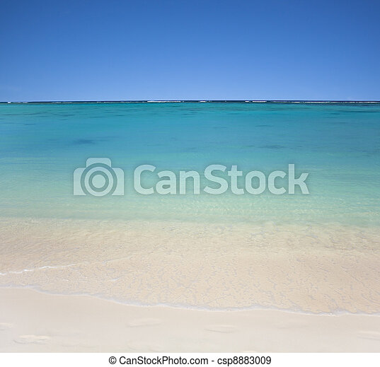 beach with clear  waters and blue sky - csp8883009