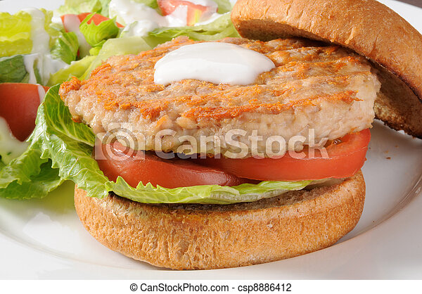 Low fat chicken or turkey bugger - csp8886412
