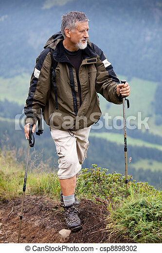 Active senior hiking in high mountains (Swiss Alps)  - csp8898302