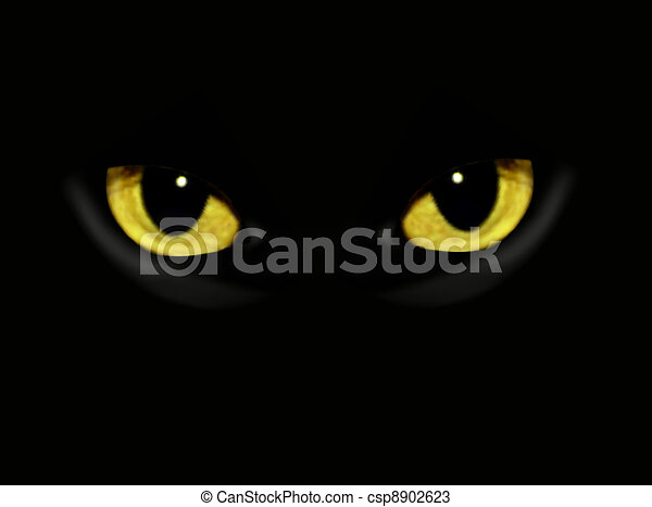 Cat eyes in dark night - csp8902623